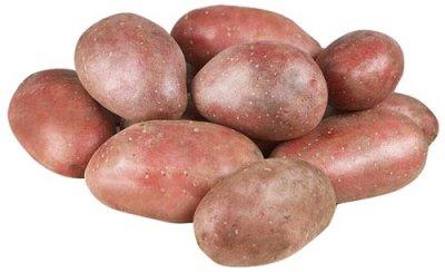Сорта картофеля Скарлет