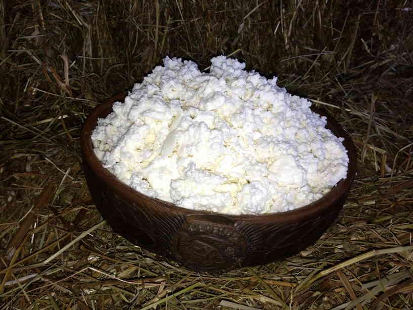Польза от творога из козьего молока