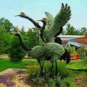 Зеленая каркасная скульптура