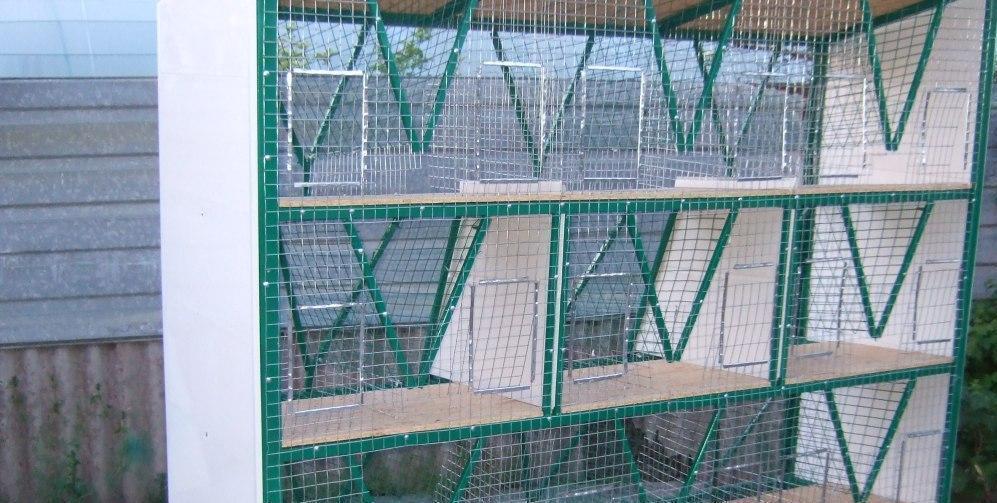 Трехэтажные клетки для кроликов. Отзыв.
