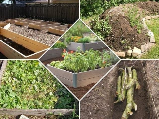 Теплая грядка для овощей и зелени