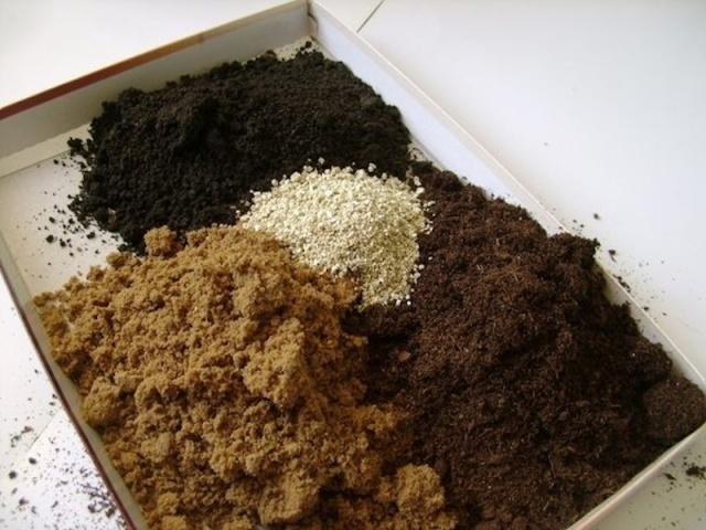 Потготовка почвы для рассады