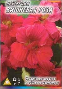 Настурция Вишневая роза