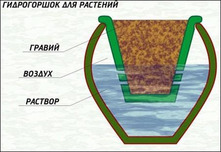 Гидрогршок для растений