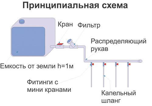 Схема капельного полива
