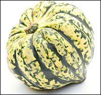 Сорт тыквы Арлекин