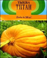 Сорт тыквы Титан