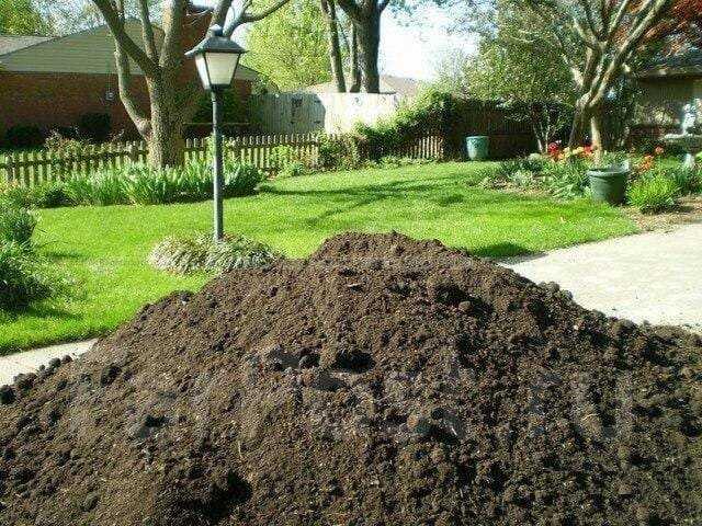 Определение особенностей почвы на участке