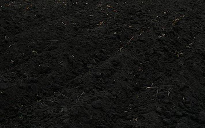 Черная земля - чернозм