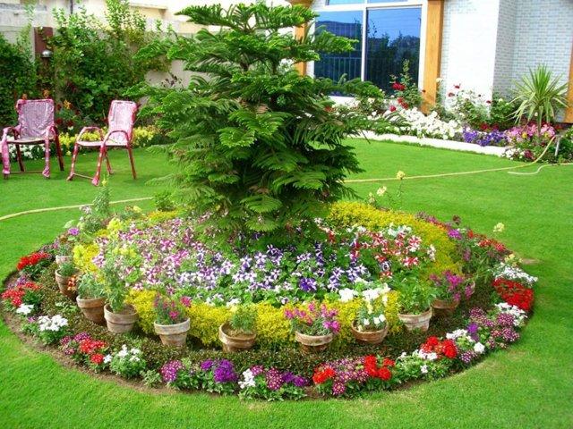 Декоративные ядовитые цветы на наших участках