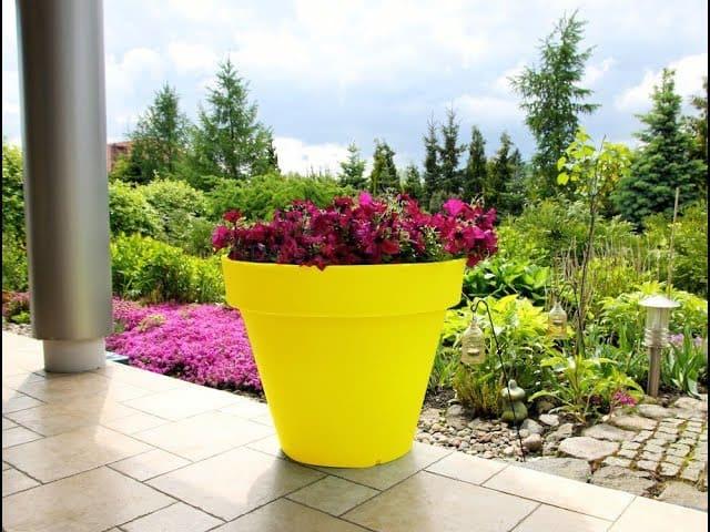 Горшки и другие сосуды для выращивания домашних цветов