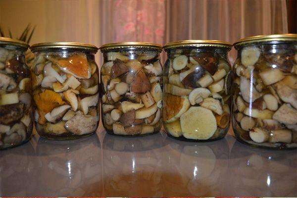 Консервирование грибов в герметически закрытой таре